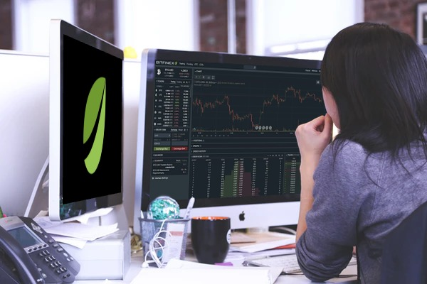 Bitfinex Strongly Refutes Insolvency Claims