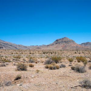 Nevada-1068x1068