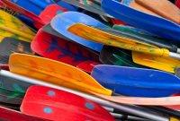 oars, boat
